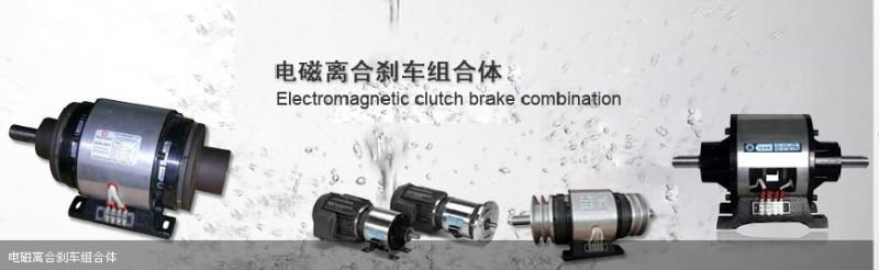 electric clutch and brake